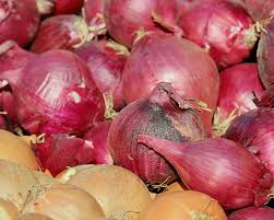 Export of onion seeds banned with immediate effect: Government