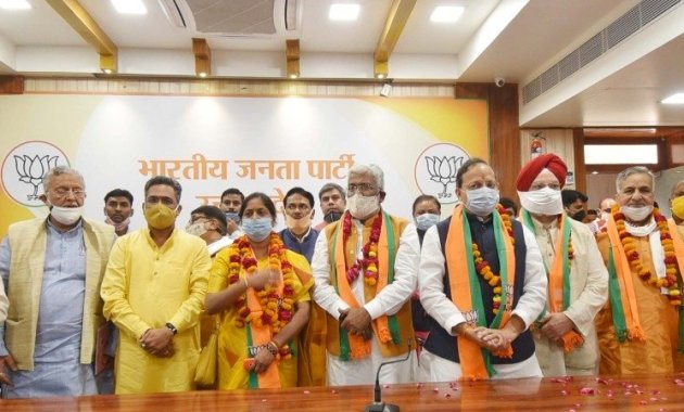 All 10 candidates, including 8 from BJP, elected unopposed