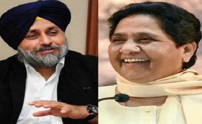 SAD, BSP form alliance for Punjab Assembly polls 2022